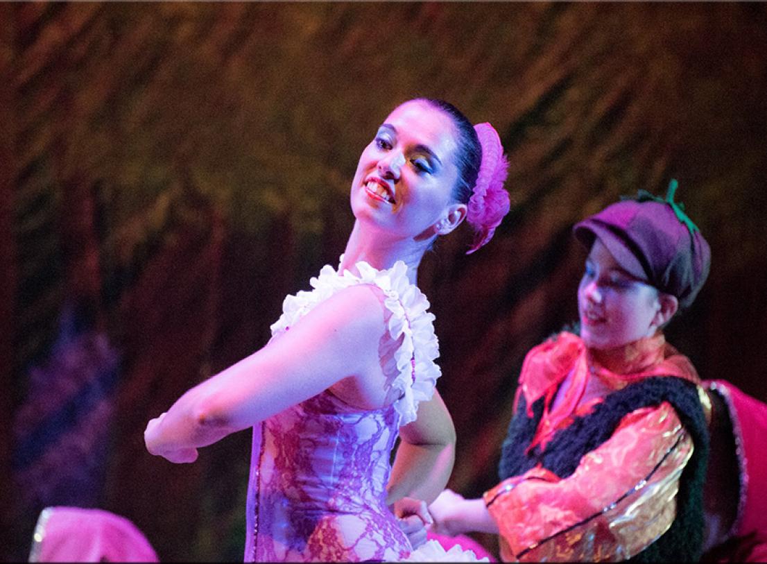 danzart-cipollino